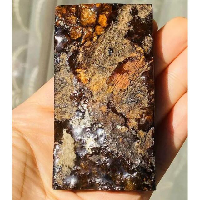 パラサイト 隕石