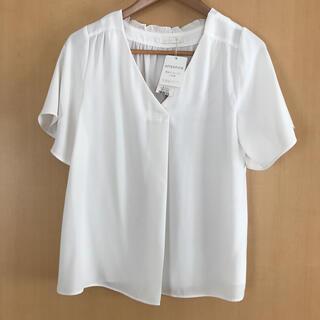 エージーバイアクアガール(AG by aquagirl)のアクアガール きれいめシャツ(シャツ/ブラウス(半袖/袖なし))