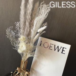 g*グレーセット パンパスグラス テールリード シルバーデイジー インテリア (ドライフラワー)