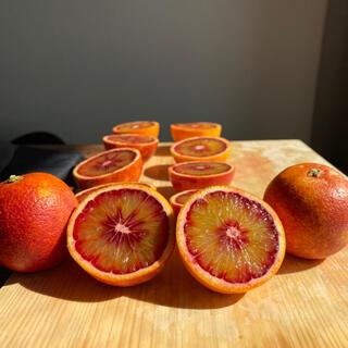ブラッドオレンジ(優品)(フルーツ)