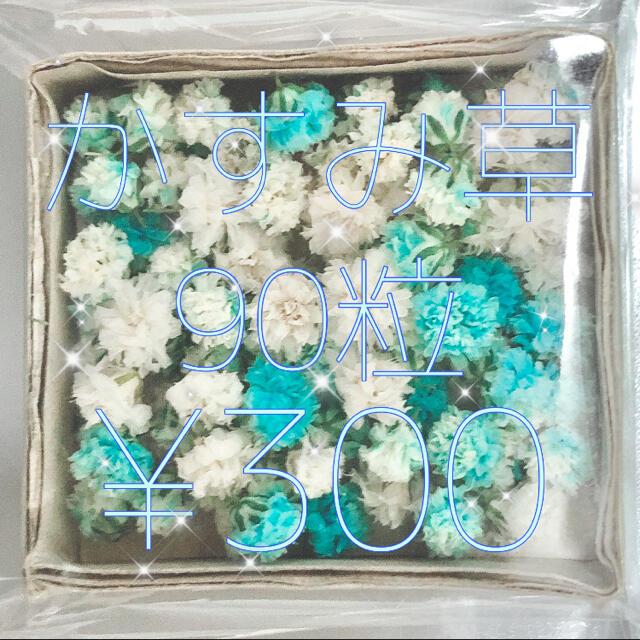 かすみ草 ドライフラワー 薄ブルー&ホワイトmix ハンドメイドのフラワー/ガーデン(ドライフラワー)の商品写真