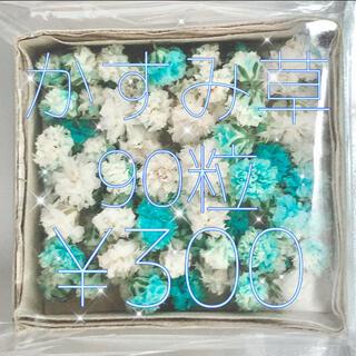 かすみ草 ドライフラワー 薄ブルー&ホワイトmix(各種パーツ)