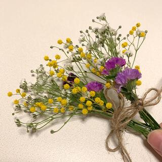 ドライフラワー かすみ草とミモザの春色スワッグ ミニ(ドライフラワー)
