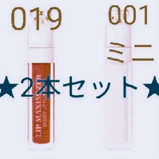 Christian Dior - ディオール アディクト リップマキシマイザー 001&019