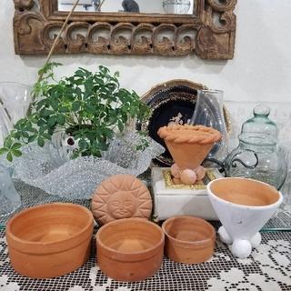ミニ多肉植物を使って、かわいい寄せ植えを作ってみませんか【8点】Bセット*.。❁(プランター)