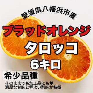 【愛媛県産】ブラッドオレンジ6キロ【希少品種タロッコ】(フルーツ)