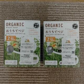 ORGANIC おうちでベジ ブロッコリースプラウト 種入×2箱(野菜)