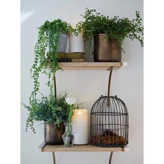 ムジルシリョウヒン(MUJI (無印良品))のSOLSO FARM🍋新品 ブロンズカラー アンティークプランター 観葉植物鉢(その他)
