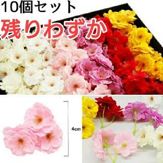 (651) 選べる6色 ソープフラワー 桜 花材 ハンドメイド 贈り物 10個(その他)