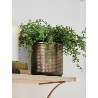 アクタス(ACTUS)の植木鉢🍋新品 ブロンズカラー アンティークデザインプランター 植木鉢カバー(その他)