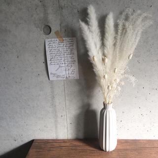 パンパスグラス ホワイトセット #26 ドライフラワー(ドライフラワー)