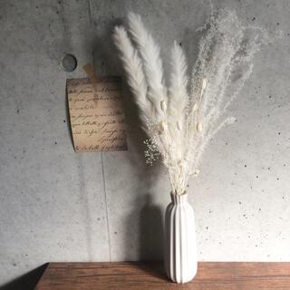 パンパスグラス ホワイトセット #28 ドライフラワー(ドライフラワー)