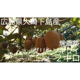 無農薬!広島県大崎下島産 グリーンキウイ小玉2キロ(フルーツ)