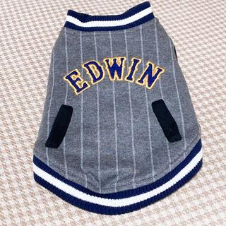 エドウィン(EDWIN)のEDWIN♡キルティングコート♡Sサイズ(犬)
