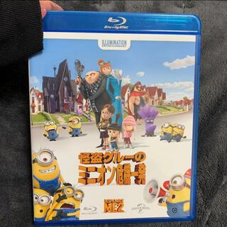 ミニオン - 怪盗グルーのミニオン危機一発 13米 DVD