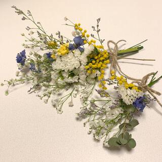 ドライフラワー フレッシュかすみ草とミモザ ユーカリの爽やか春スワッグ (ドライフラワー)