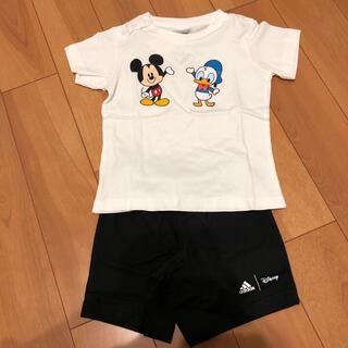 Disney - アディダス ディズニー Tシャツ、パンツセット 80