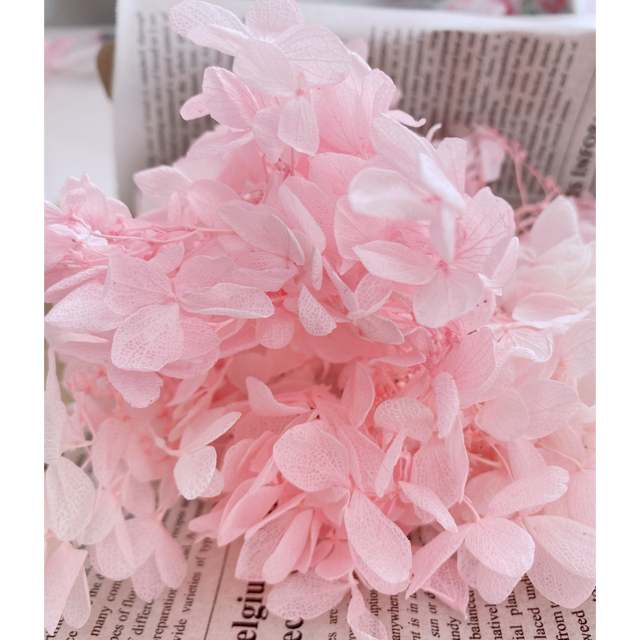 【kyukyu様専用】アジサイ ライトブルーホワイト&ピンク ハンドメイドのフラワー/ガーデン(ドライフラワー)の商品写真