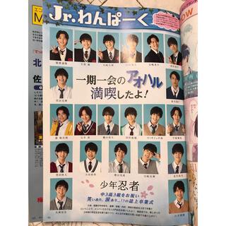 myojo4月号Jr.わんぱーく(アート/エンタメ/ホビー)