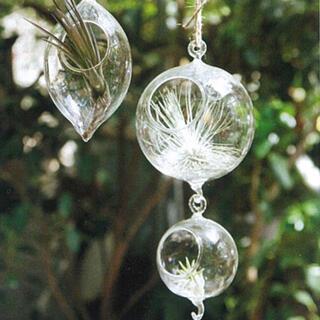 アクタス(ACTUS)のACTUS ガラステラリウム ハンギングベース ボール ガラスポット (花瓶)