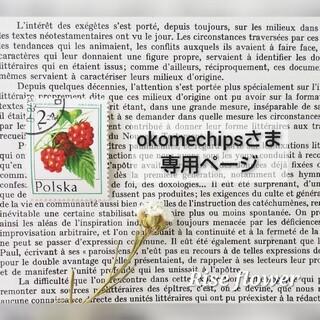 okomechipsさま専用ページ(ドライフラワー)