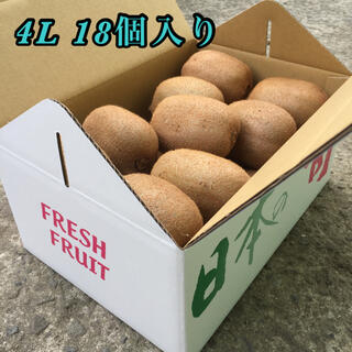 芯が甘い!【二級品】和歌山県産キウイフルーツ 4L 18個入り(フルーツ)