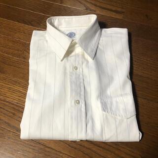 Jプレス ビジネスシャツ ピンストライプ