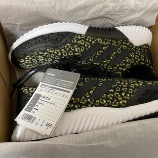 adidas -  新品【adidas】クライマクール バウンス BLACK/GOLD