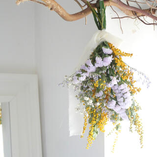 mimosa swag  春の花ミモザスワッグ(ドライフラワー)