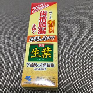 小林製薬 - 生葉 10g  新品未開封品