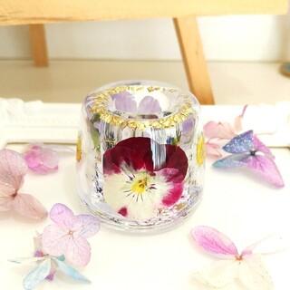 No.223 ピンク&紫ビオラ♡固まるハーバリウムペン立て•印鑑立て(ドライフラワー)