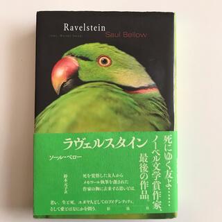 ラヴェルスタイン(文学/小説)