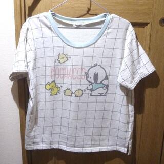 サンリオ - サンリオ ポチャッコのTシャツ サイズF <a640>