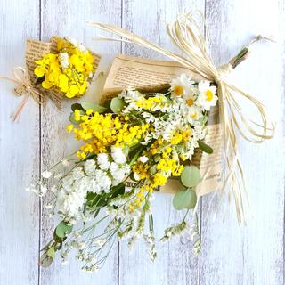 ☆ミモザのスワッグ&菜の花のミニブーケ☆No.106(ドライフラワー)