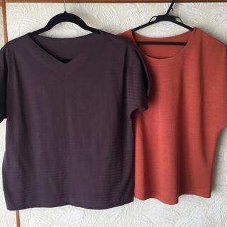 シャルレ(シャルレ)のシャルレ Tシャツ2枚セット🌹(Tシャツ(半袖/袖なし))