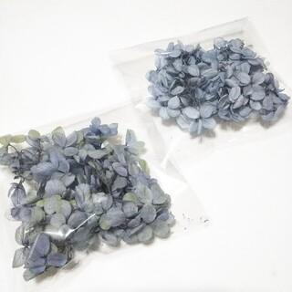ドライフラワー 紫陽花 ロイヤルブルー&ブルーライム NO.13(各種パーツ)