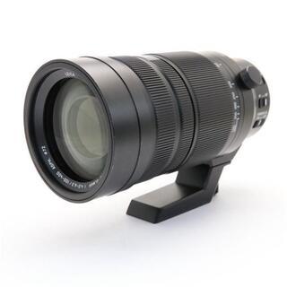 Nikon - LUMIX  ELMAR 100-400mm F4.0-6.3 ASPH.