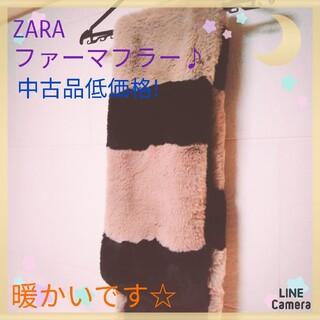 ザラ(ZARA)の暖かい!『ZARAレディースファーマフラー』中古品低価格!(マフラー/ショール)