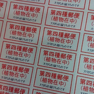 サンキューシール ケアシール シンプル第4種郵便 88枚(その他)