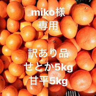 miko様 専用 訳あり品 甘平5kg せとか5kg(フルーツ)