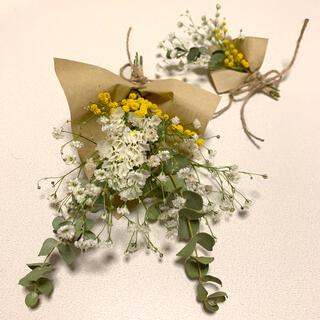 ドライフラワー フレッシュかすみ草とミモザ ユーカリの春スワッグ (ドライフラワー)