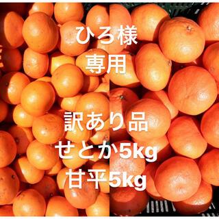 ひろ様 専用 訳あり品 愛媛県 甘平5kg せとか5kg(フルーツ)
