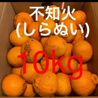 和歌山県 訳あり傷あり不知火(しらぬい)約10Kg(フルーツ)