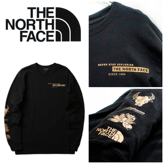 THE NORTH FACE - 北米限定◆21ss◆THE NORTH FACE ロンT ブラック US L