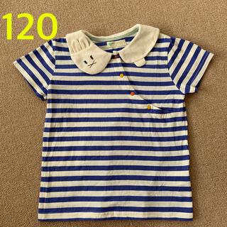 sense of wonder - 【未使用に近い】ベイビーチアー ウサギ襟パフスリーブTシャツ 120