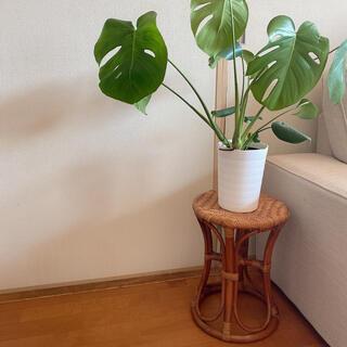 アクタス(ACTUS)のラタン スツール 籐 ヴィンテージ 椅子 棚 丸椅子 バンブー サイドテーブル(スツール)