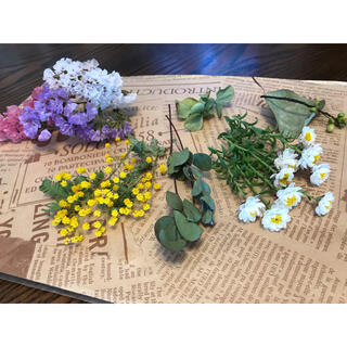 春の小花 ドライフラワー 花材 セット(花かんざし ミモザ スターチス)(ドライフラワー)