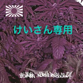 けいさん専用 舐達麻 NORTHERNBLUE 1.0.4. 2LP(ヒップホップ/ラップ)