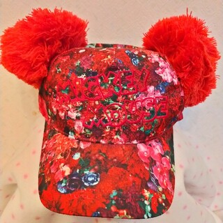 Disney - ディズニー帽子 蜷川実花 実写 完売