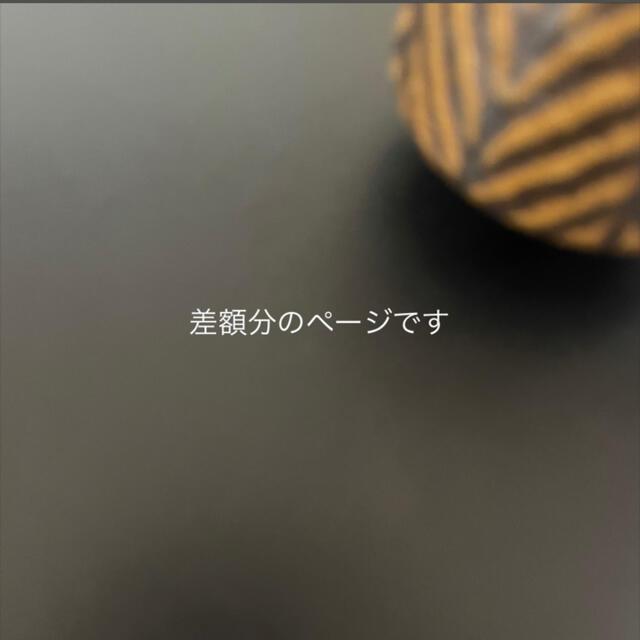 くろ様専用 差額分のページです ハンドメイドのアクセサリー(コサージュ/ブローチ)の商品写真